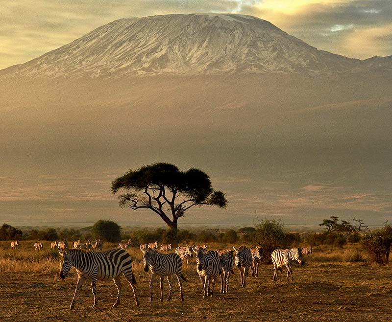 Safari-Tsavo-Est-e-Amboseli-2