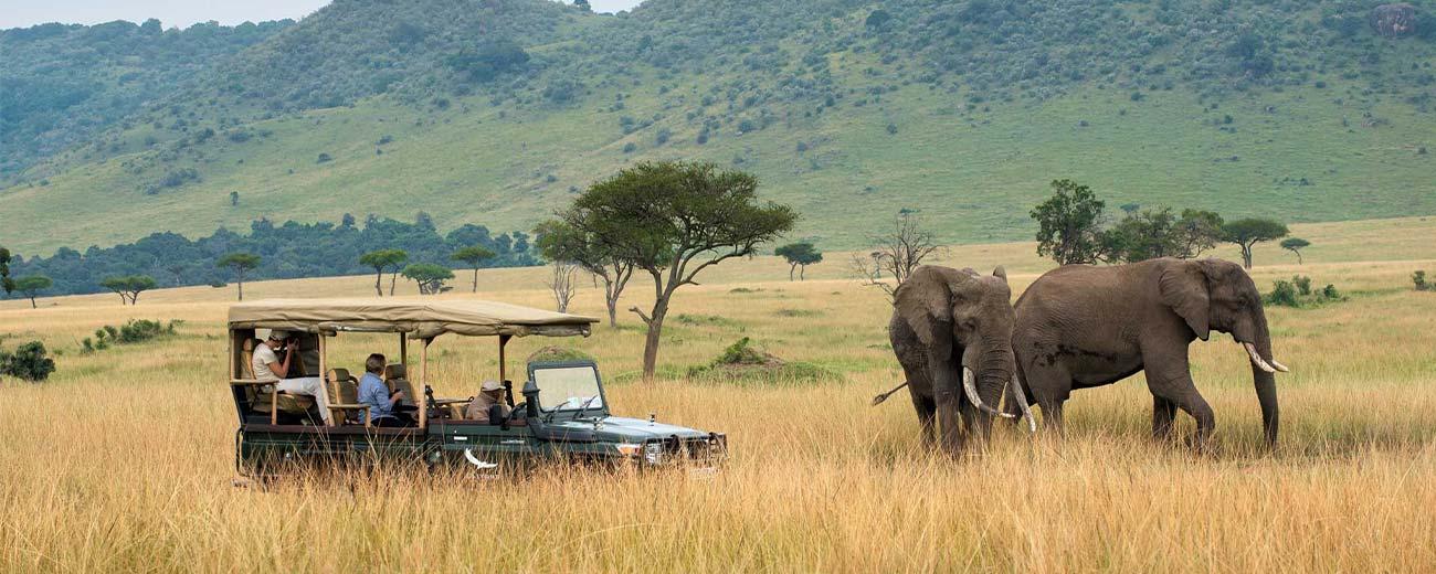 Safari-Masai-Mara-.-Lago-Nakuru-.-Amboseli-.-Taita-Hills-.-Tsavo-Est-3