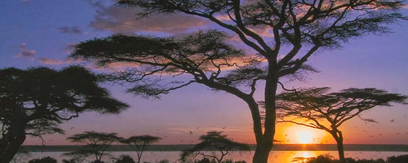 Safari-Masai-Mara-.-Lago-Nakuru-.-Amboseli-.-Taita-Hills-.-Tsavo-Est-7