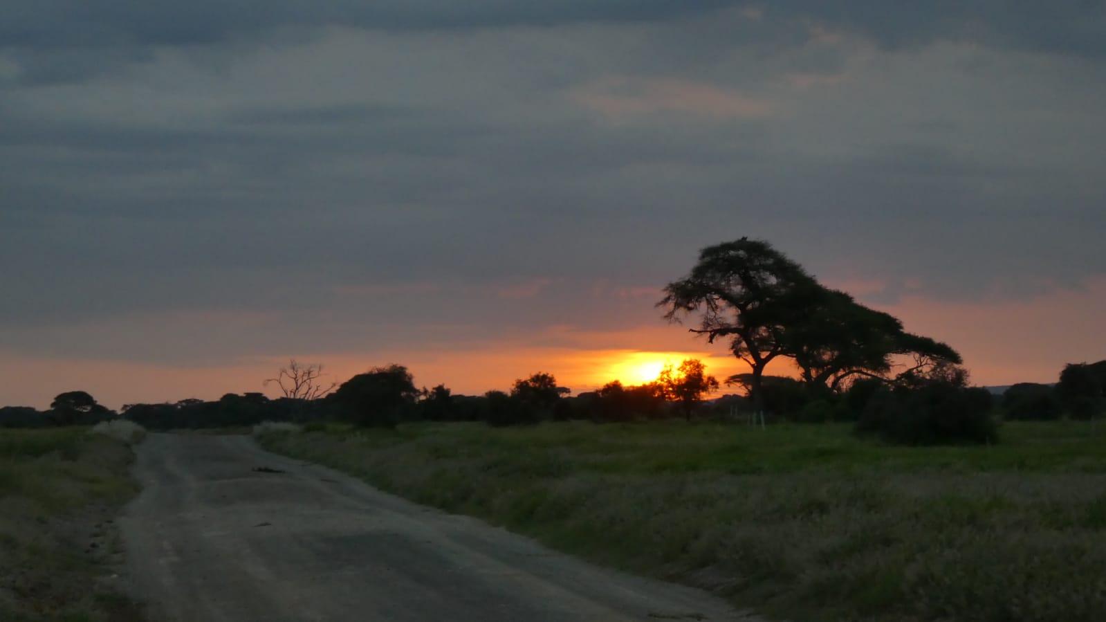 WhatsApp Image 2020 01 26 at 18.31.57 - Safari Masai Mara . Lago Nakuru . Amboseli . Tsavo Est