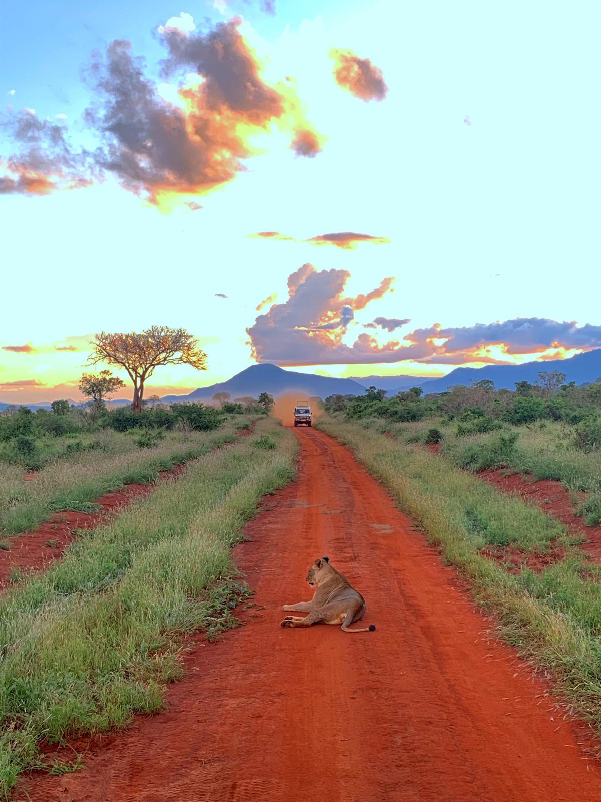 WhatsApp Image 2019 12 16 at 13.45.31 - Safari Masai Mara . Lago Nakuru . Amboseli . Taita Hills . Tsavo Est