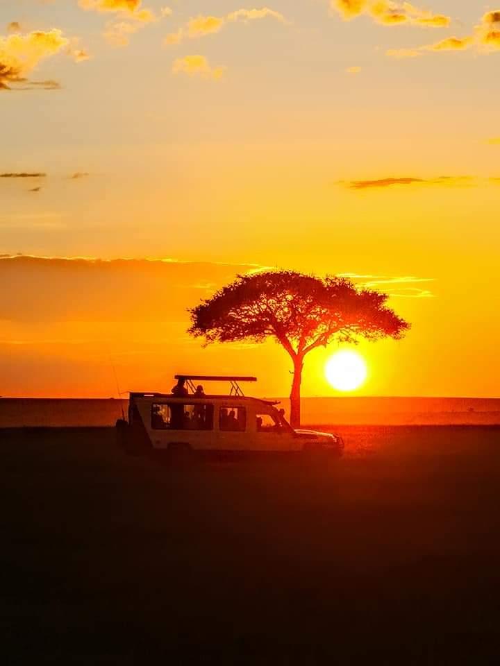 WhatsApp Image 2019 12 29 at 16.45.34 - Safari Samburu . Olpejeta . Lago Nakuru . Lago Bogoria . Lago Naivasha . Masai Mara . Nairobi . Amboseli . Tsavo Ovest . Taita Hills . Tsavo Est